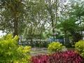 百丰花园实景图