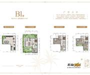 别墅B1户型-5房2厅4卫